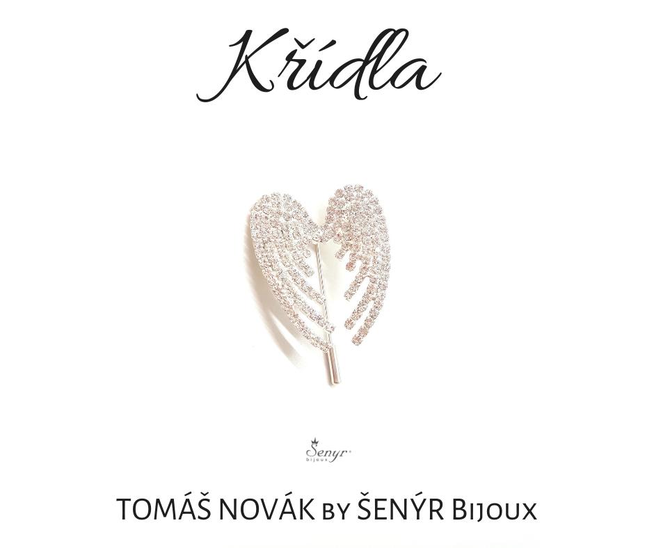 the Wings by singer Tomas Novak