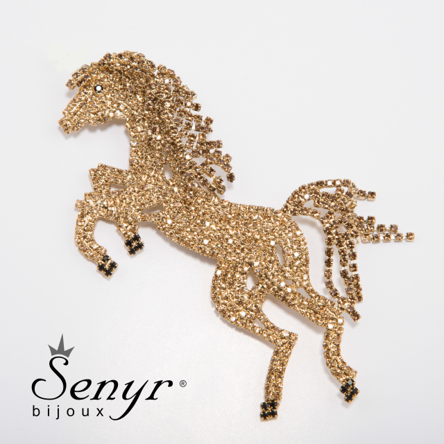Brooch pony